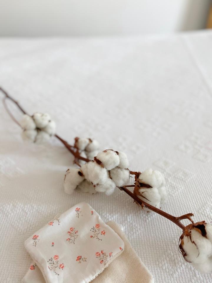 Le coton : lafabrication